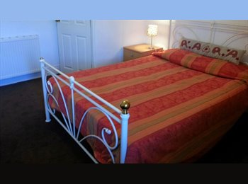 EasyRoommate UK - Double Bedded room with wash basin, Chester - £380 pcm