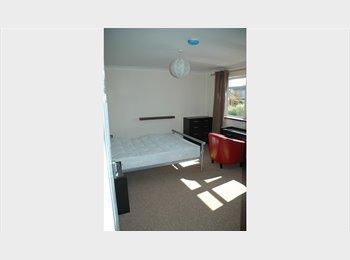 EasyRoommate UK - Beautiful  light, large double, en-suite room , Western Docks - £520 pcm