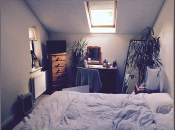 EasyRoommate UK - Lovely double room available in townhouse - Didsbury, Didsbury - £300 pcm