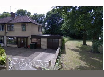 EasyRoommate UK - Newly refurbished house for Christian ONLY (Sorry), Westwood Heath - £265 pcm