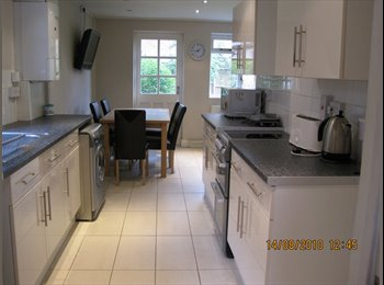 EasyRoommate UK - Modernised house, Oxford, Marston - £500 pcm
