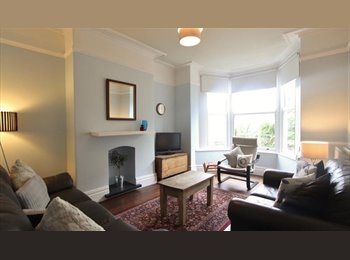 EasyRoommate UK - Room to rent room in professional house share, Nether Edge - £373 pcm
