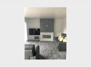 EasyRoommate UK - Double Room   ***WEEKDAYS  ONLY (MON to FRI)***, Basingstoke - £300 pcm