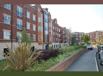 EasyRoommate UK - Nice Flat Far Headingley Carrisbrook Road £375PCM, Weetwood  - £400 pcm