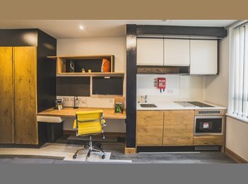 EasyRoommate UK - 5 bedroom student house, Hockley - £355 pcm