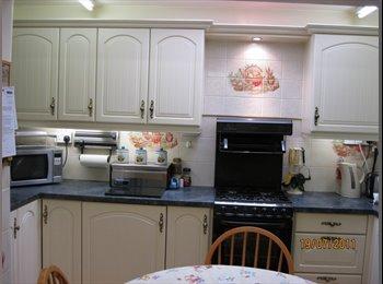 EasyRoommate UK - House suitable 4 share in Swansea location, Swansea - £350 pcm