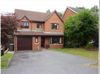 EasyRoommate UK - House details, Redditch - £350 pcm