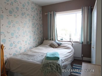 EasyRoommate UK - Sunny double room in peaceful surroundings, Street - £400 pcm