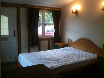EasyRoommate UK - DOUBLE ROOM IN SHARED CHARACTER HOUSE, Chelmsford - £360 pcm