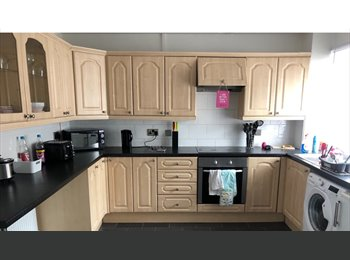 EasyRoommate UK -  house to let from 1st July  2017, Stoke Aldermoor - £675 pcm