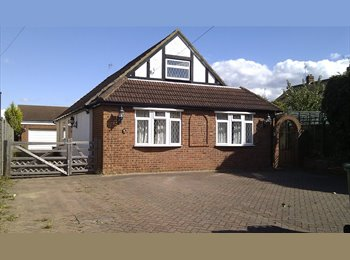 EasyRoommate UK - Double room in detached house available, Ware - £485 pcm
