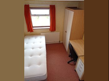 EasyRoommate UK - Room to rent in spacious shared house, Gloucester - £340 pcm