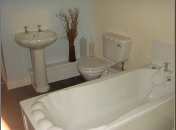 EasyRoommate UK - 7 Beds, 2 ensuites!!! avail in shared house-other houses also!!, Swansea - £286 pcm