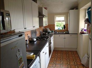 EasyRoommate UK - Superb furnished double room, Horfield - £475 pcm