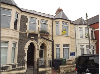 EasyRoommate UK - ROOMS TO LET, Cathays - £300 pcm