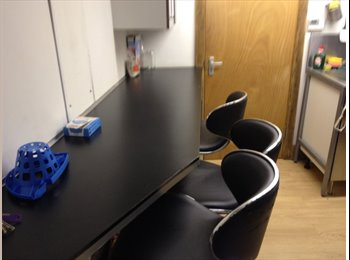EasyRoommate UK - House share  Professional or student, Coventry - £400 pcm