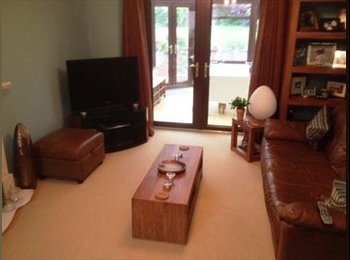EasyRoommate UK - Good size double room in Willen close to the lake., Newport Pagnell - £500 pcm