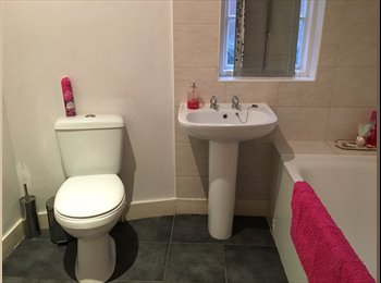 EasyRoommate UK - MONDAY TO FRIDAY PREFERRED - DOUBLE BEDROOM IN NEWLY REFURBISHED HOUSE TO LET, High Town - £450 pcm