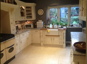 EasyRoommate UK - Lovely single room,beautiful house,East Finchley, Fortis Green - £650 pcm