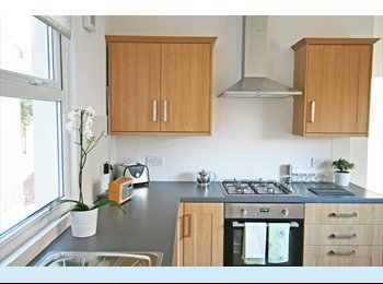 EasyRoommate UK - Double Rooms AVAILABLE in lovely Student House in NEWPORT, Newport - £280 pcm