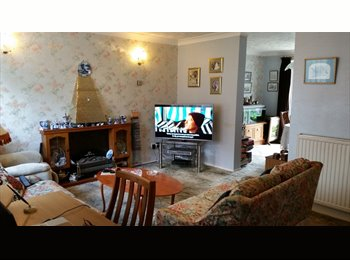 EasyRoommate UK - Lovely  place for successful studies, Chichester - £425 pcm