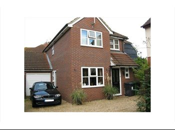 EasyRoommate UK - Choice of double rooms (one ensuite) in friendly relaxed house, Hook - £450 pcm