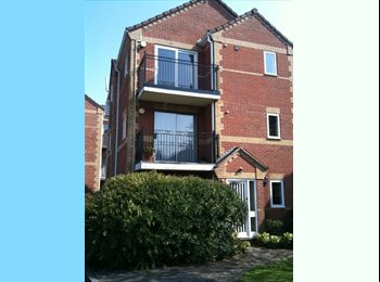 EasyRoommate UK - Double room in centrally located apartment, Peterborough - £425 pcm