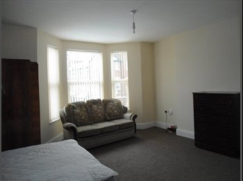 EasyRoommate UK - Luxury High Quality Furnished Rooms in Large Clean Town House, Doncaster - £320 pcm