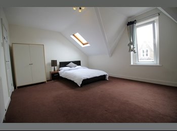 EasyRoommate UK - Double bedroom in a spacious first floor, four bedroom flat share, Roath - £435 pcm
