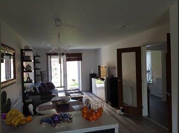 EasyRoommate UK - new detached house, Peterborough - £450 pcm