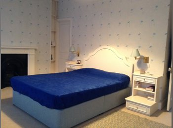 EasyRoommate UK - Big double room very well furnished, Chelsea - £1,300 pcm