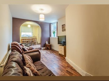 EasyRoommate UK - * Professionals look no further** hunter's Bar, Nether Edge - £400 pcm