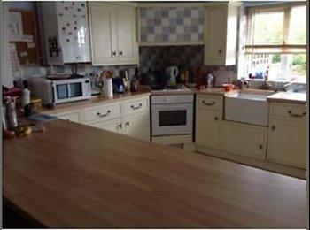 EasyRoommate UK - Large house, Swansea - £268 pcm