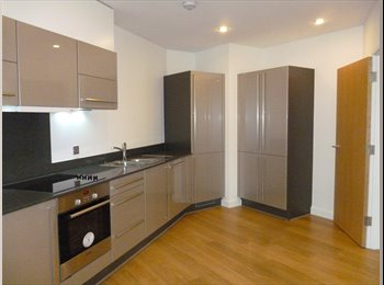 EasyRoommate UK - Beautiful Modern Flat To Share in Limehouse, Limehouse - £800 pcm