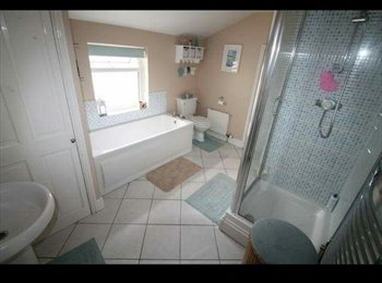 EasyRoommate UK - Large double room for rent in house share Cattedown close to town , Cattledown - £350 pcm