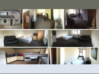 EasyRoommate UK - DOUBLE ROOM TO LET: BILLS INC, SKY TV MOVIES & SPORTS, UNLIMITED FIBRE OPTIC INTERNET, Belgrave - £335 pcm