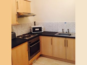 EasyRoommate UK - 2 bed student property available, Arboretum - £345 pcm