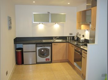 EasyRoommate UK - 1 Room Available in 2 Bedroom Flat-City Centre, Anderston - £400 pcm