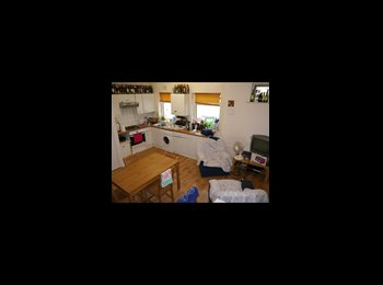 EasyRoommate UK - F  CHEAPEST SINGLE ROOM PRIVATE GARDEN IN WILLESDEN GREEN!!! 115PW ALL INCL.!!!, Willesden - £460 pcm