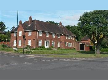 EasyRoommate UK - Beautiful detached house, Selly Oak - £400 pcm