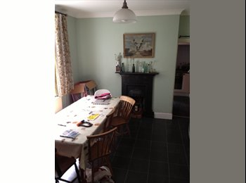 EasyRoommate UK - Room located in Roath, Cathays - £340 pcm