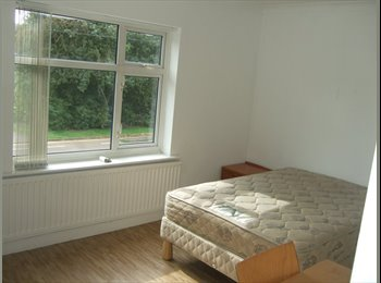 EasyRoommate UK - Lovely, bright double & single rooms available in spacious house , Lime Tree Park - £250 pcm