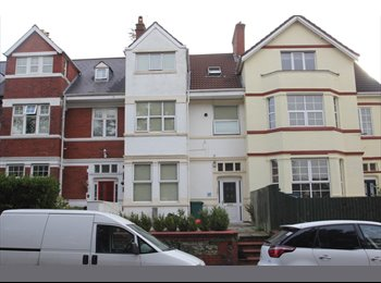 EasyRoommate UK - Newport House Share 5 mins from City Centre, Newport - £400 pcm