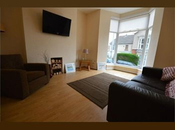 EasyRoommate UK - 2 double rooms to rent in fantastic property in Mount Pleasant, Swansea - £340 pcm