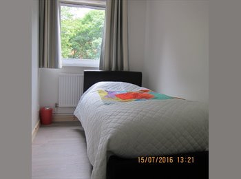 EasyRoommate UK - Comfy Furnished Bedroom, Friendly Flat, All New. 5 Star Reviews  Zone 2  - City, Canary Wharf, Tower, Limehouse - £600 pcm