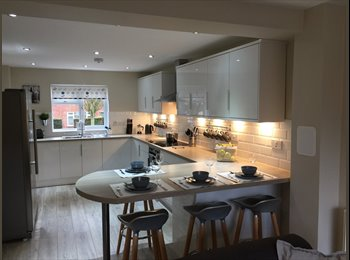 EasyRoommate UK - DOUBLE ROOM WITH EN-SUITE IN AN IMMACULATE MODERN NEWLY REFURBISHED HOUSE IN HUNTINGDON, Huntingdon - £525 pcm