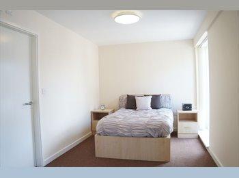 EasyRoommate UK - BEAUTIFUL STUDIO TO RENT , Ladywood - £600 pcm