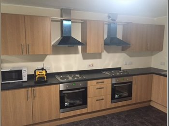 EasyRoommate UK - Fully refurbished, self contained double rooms available in a large house share situated in Middlecl, Mexborough - £300 pcm