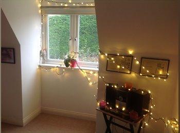 EasyRoommate UK - Double Room To Rent, Salisbury - £475 pcm