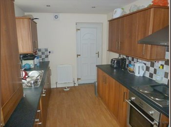 EasyRoommate UK - ROOM IN PROFESSIONAL HOUSE SHARE - £350pcm BILLS INC, Heaton - £350 pcm